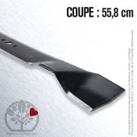 Lame. Coupe 55,8 cm. Section 57,2 x 3,4. Alèsage 15,9.
