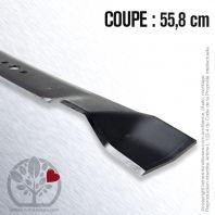 Lame. Coupe 55,8 cm. Section 57,2 x 3,4. Alèsage 15,9.