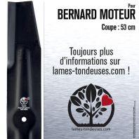 Lame pour Bernard Moteur 1806. Coupe 53 cm